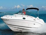 location bateau Sea Ray 245