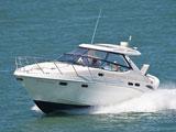 location bateau Sealine 41