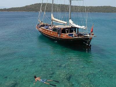 location bateau Trippin