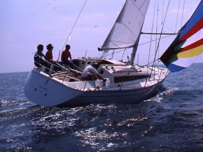 location bateau Sun Rise 34