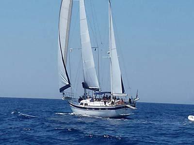 location bateau Irwin 65