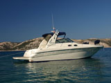 location bateau Sea Ray 310 Sunduncer