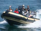 location bateau Sillinger 580 Silverline