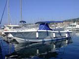location bateau White Shark 285