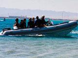 location bateau Tiger Marine 600