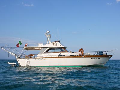 location bateau Kitalpha 15 Fly