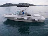 location bateau Sea Ray 205 Sport