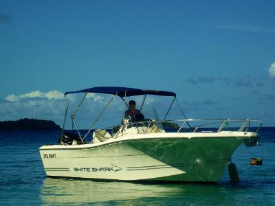 location bateau White Shark 226