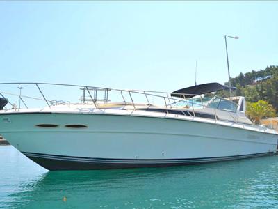 Location bateau  Sea Ray 390
