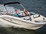 location bateau Sea Ray 19 SPX