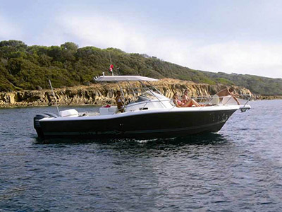 Location bateau  White Shark 298