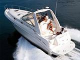 location bateau Sea Ray 340 Sundancer