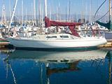 location bateau Albin Ballad 31