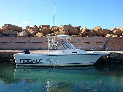 Location bateau  Robalo 2140