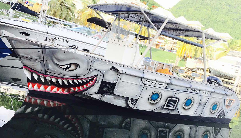 location bateau Tiger 700