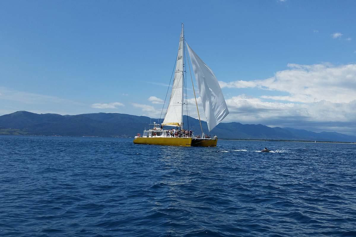 location bateau Navivoile