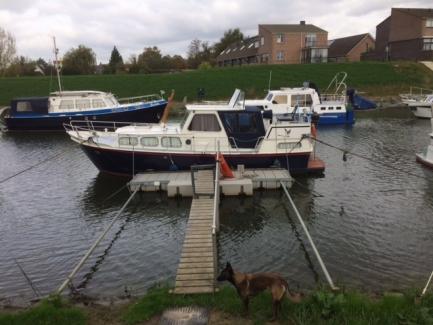 location bateau Vedette Altena 9.50