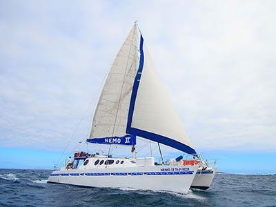 location bateau Nemo II