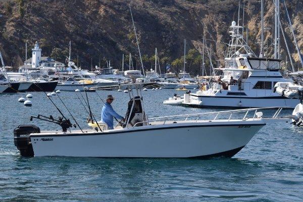 location bateau Mako Marine 241