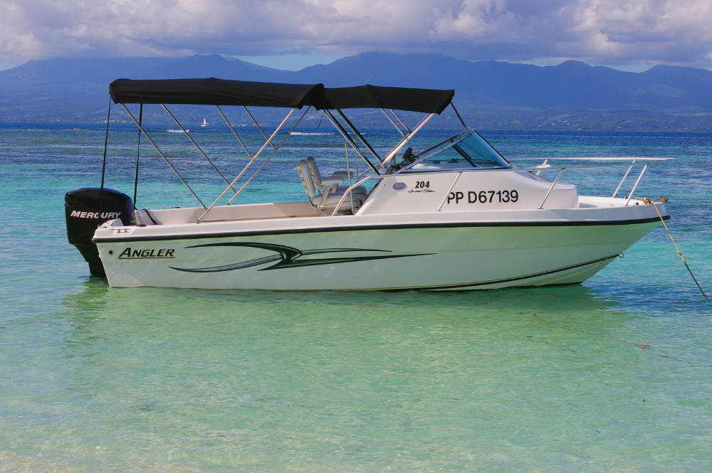 location bateau Angler 204 WA