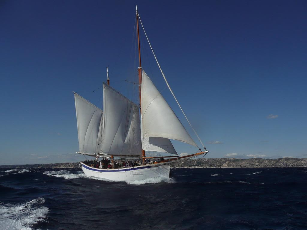 Location bateau  Alliance
