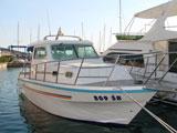 location bateau Damor 800