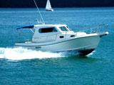 location bateau Damor 900