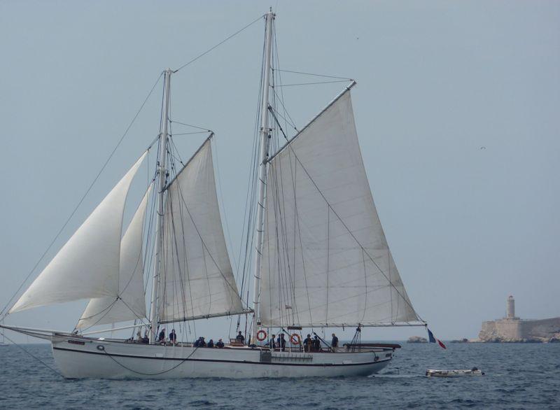 location bateau Noctilio